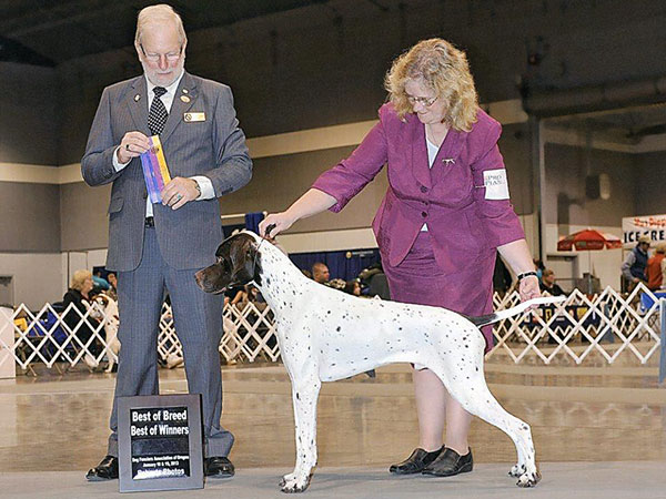 Clyde - Best of Breed and Best of Winners
