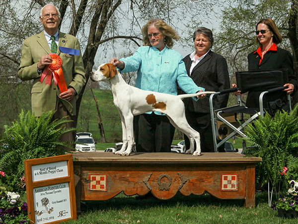 Patch - Best Baby Puppy at American National Specialty
